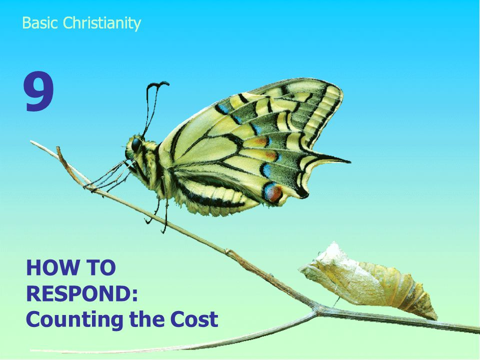 HOW TO RESPOND: Counting the Cost 9