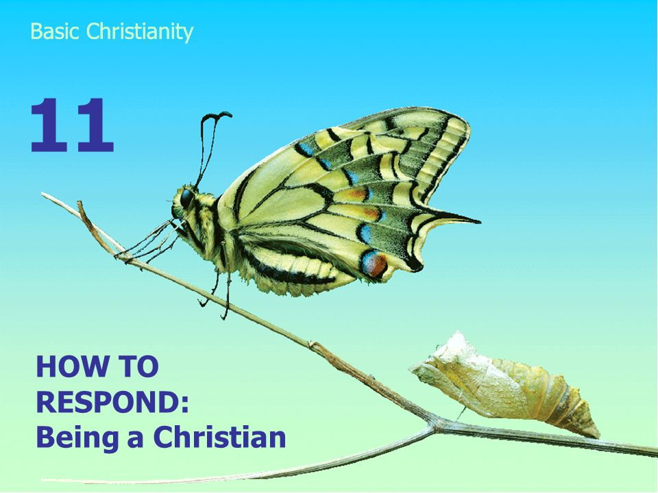 HOW TO RESPOND: Being a Christian 11