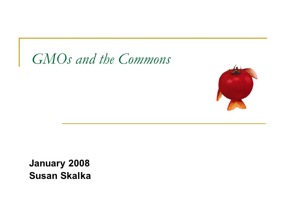 GMOs and the Commons January 2008 Susan Skalka