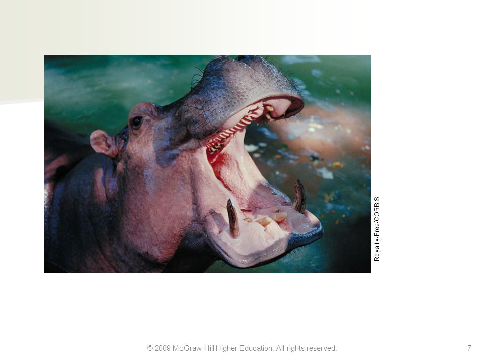In short: The idea of the teacher owning a hippo conflicts with your background knowledge. 6 © 2009 McGraw-Hill Higher Education.