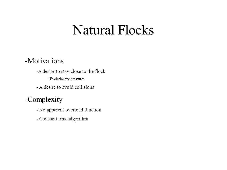 Natural Flocks -Motivations -A desire to stay close to the flock - Evolutionary pressures - A desire to avoid collisions -Complexity - No apparent ove