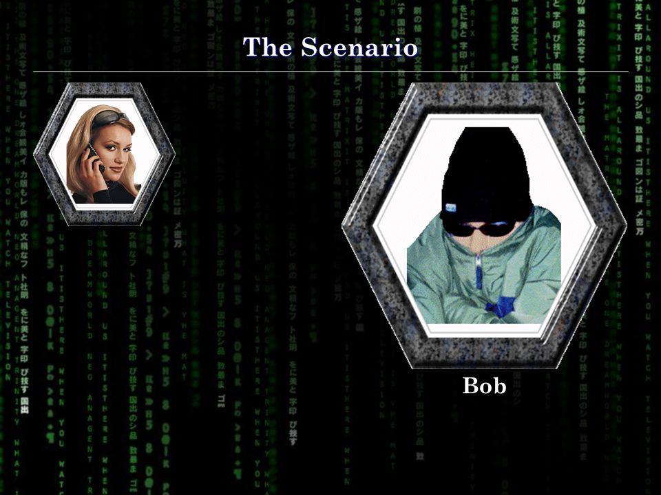 The Scenario Bob