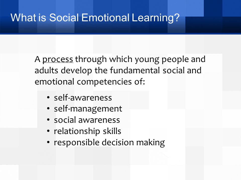 What is Social Emotional Learning? A process through which young people and adults develop the fundamental social and emotional competencies of: self-