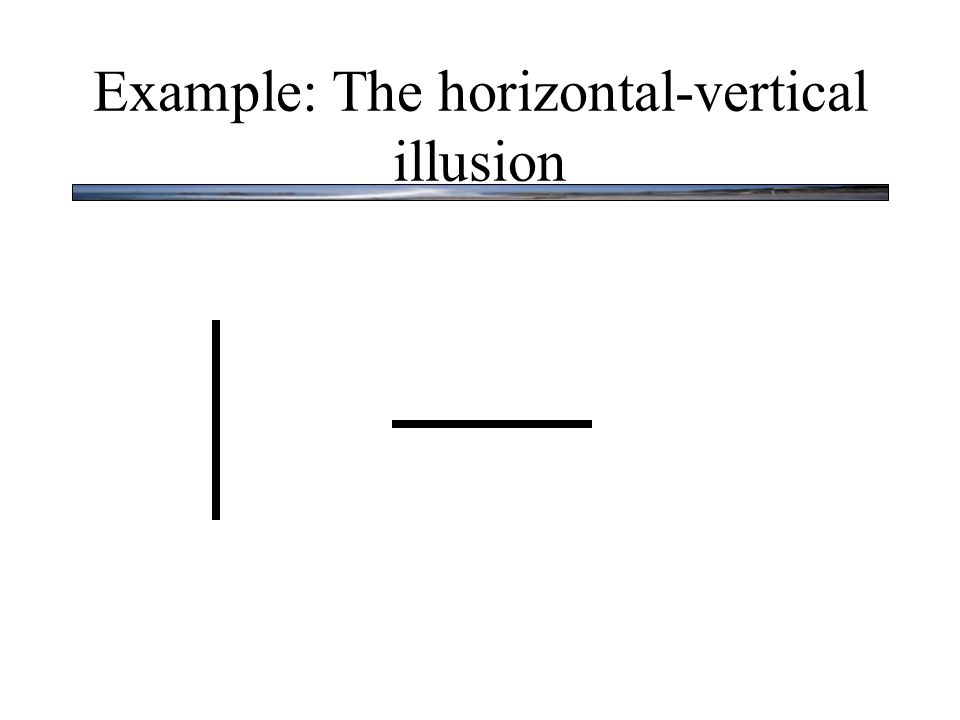 Example: The horizontal-vertical illusion