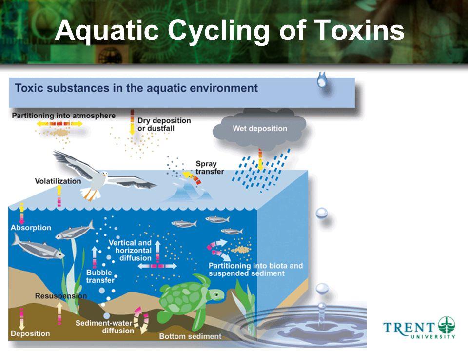 Aquatic Cycling of Toxins
