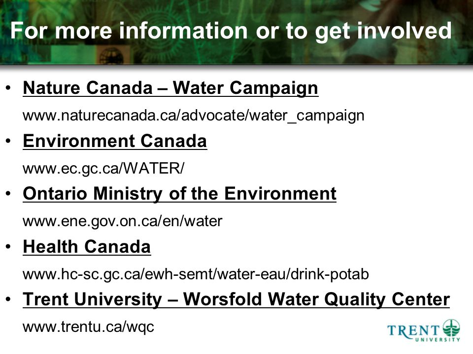 For more information or to get involved Nature Canada – Water Campaign www.naturecanada.ca/advocate/water_campaign Environment Canada www.ec.gc.ca/WATER/ Ontario Ministry of the Environment www.ene.gov.on.ca/en/water Health Canada www.hc-sc.gc.ca/ewh-semt/water-eau/drink-potab Trent University – Worsfold Water Quality Center www.trentu.ca/wqc