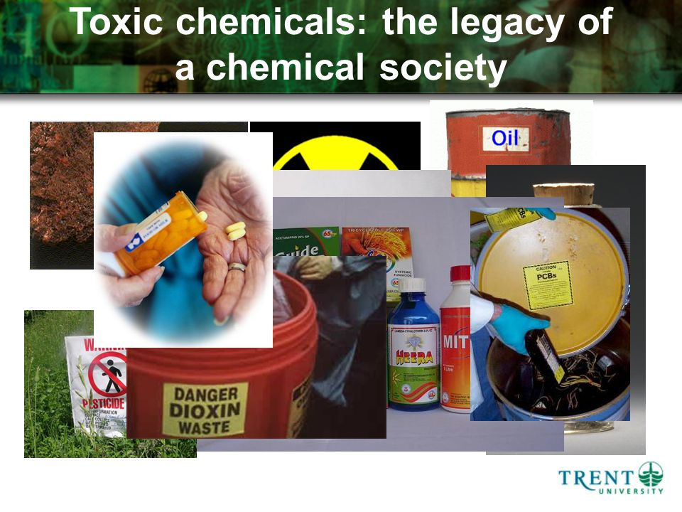 Toxic chemicals: the legacy of a chemical society