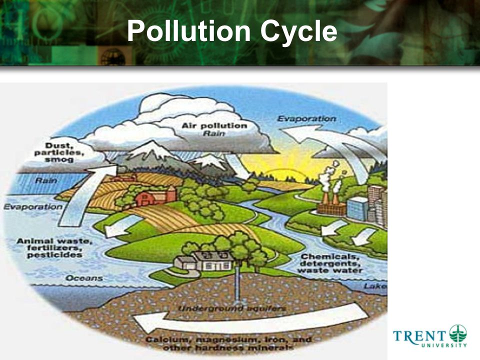 Pollution Cycle