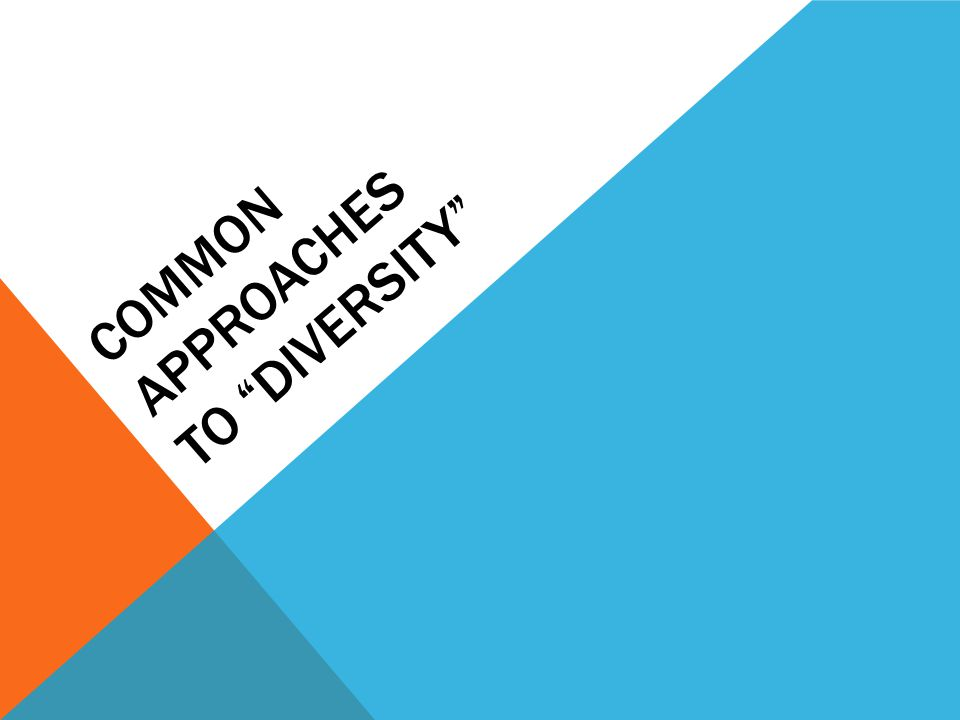 """COMMON APPROACHES TO """"DIVERSITY"""""""