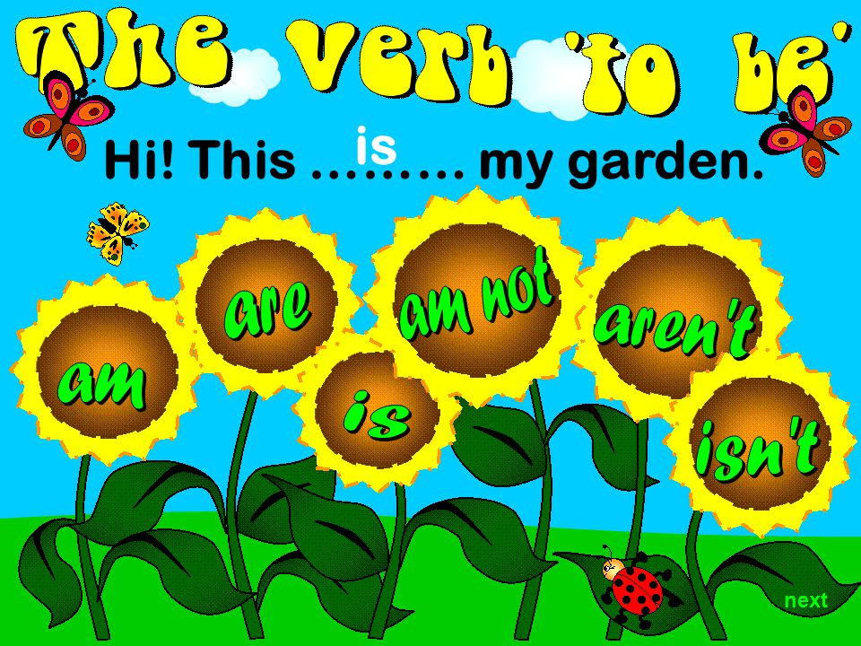 next Hi! This ……… my garden. is