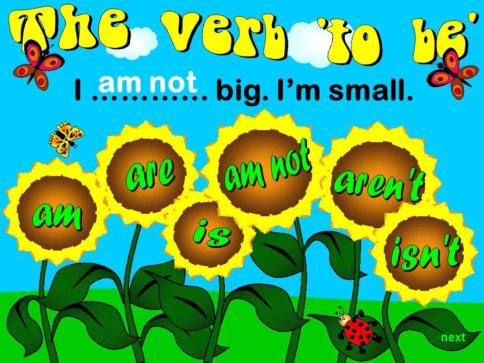 I ………… big. I'm small. am not next