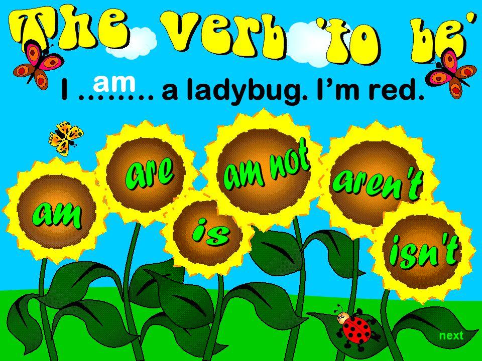 I …….. a ladybug. I'm red. am next