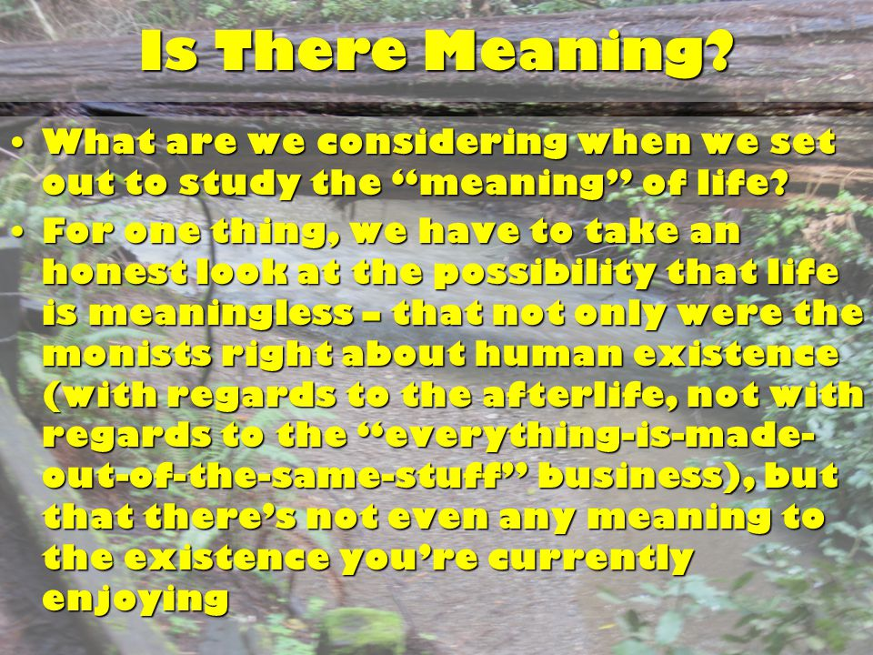 "Is There Meaning? What are we considering when we set out to study the ""meaning"" of life?What are we considering when we set out to study the ""meaning"