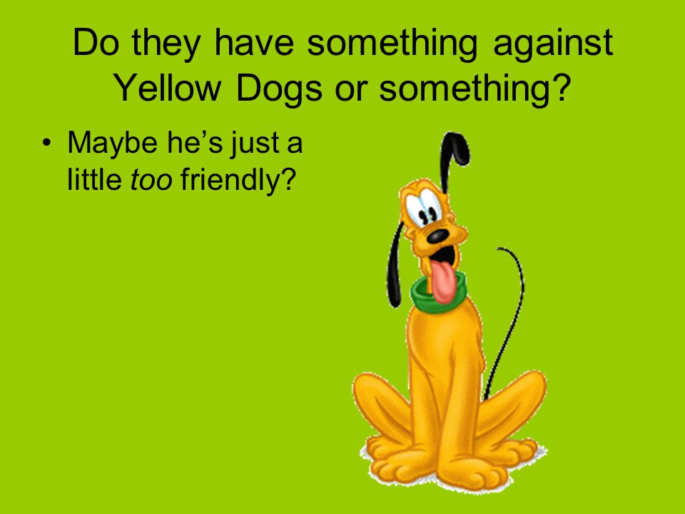 Do they have something against Yellow Dogs or something? Maybe he's just a little too friendly?