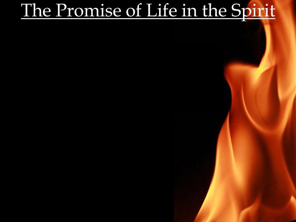 The Promise of Life in the Spirit