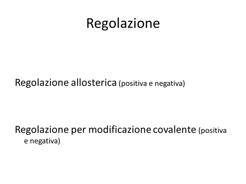 Regolazione Regolazione allosterica (positiva e negativa) Regolazione per modificazione covalente (positiva e negativa)