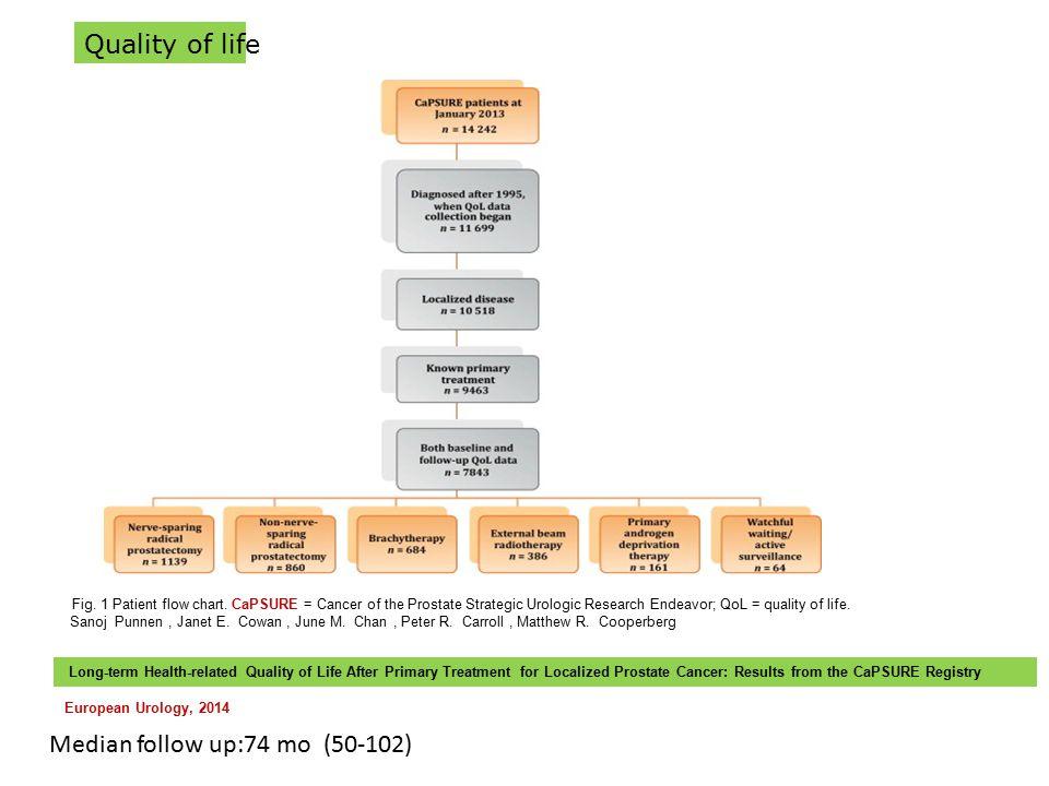 Fig. 1 Patient flow chart. CaPSURE = Cancer of the Prostate Strategic Urologic Research Endeavor; QoL = quality of life. Sanoj Punnen, Janet E. Cowan,