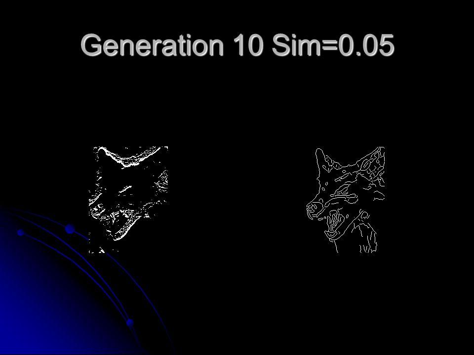 Generation 10 Sim=0.05