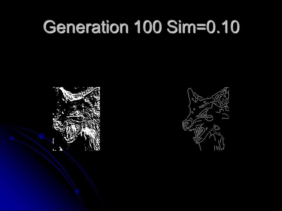Generation 100 Sim=0.10