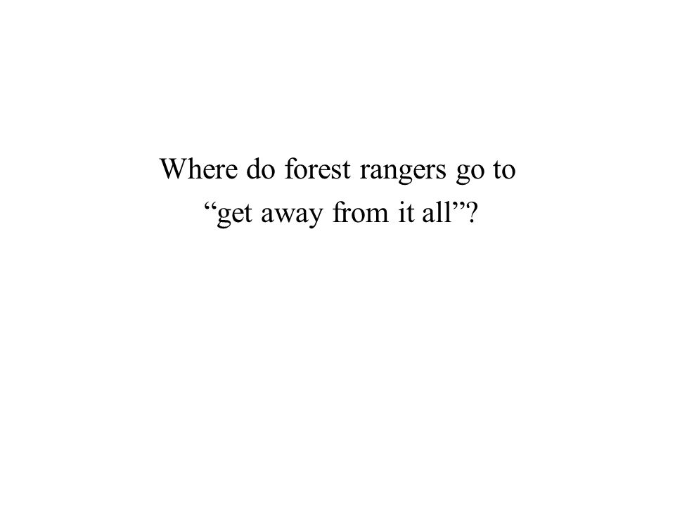 Where do forest rangers go to get away from it all ?