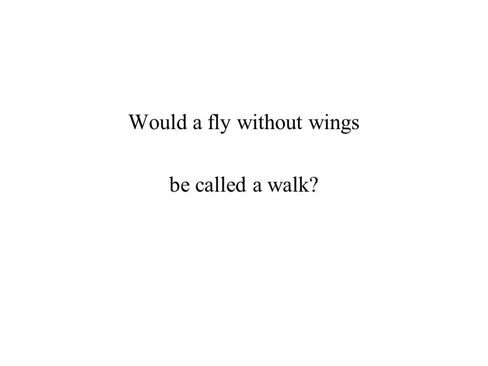 Would a fly without wings be called a walk?