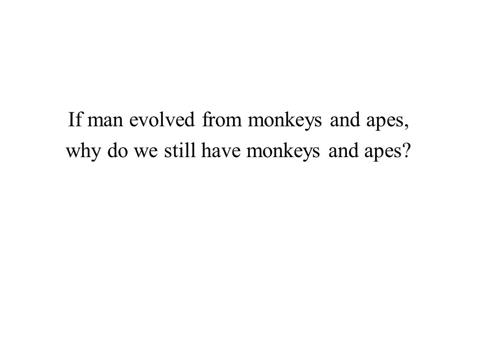 If man evolved from monkeys and apes, why do we still have monkeys and apes?
