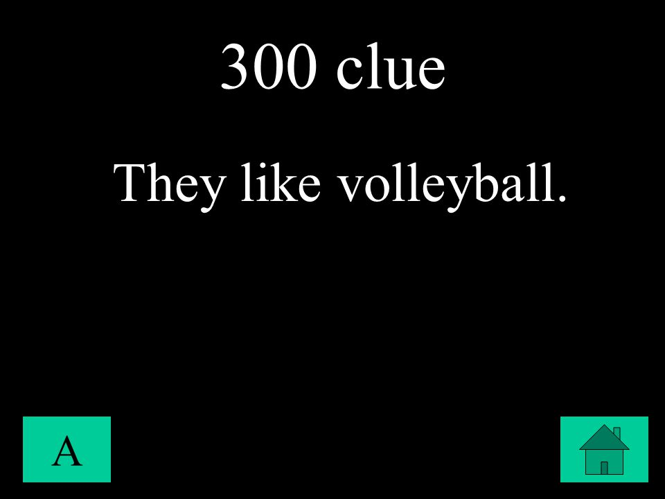 300 clue A They like volleyball.