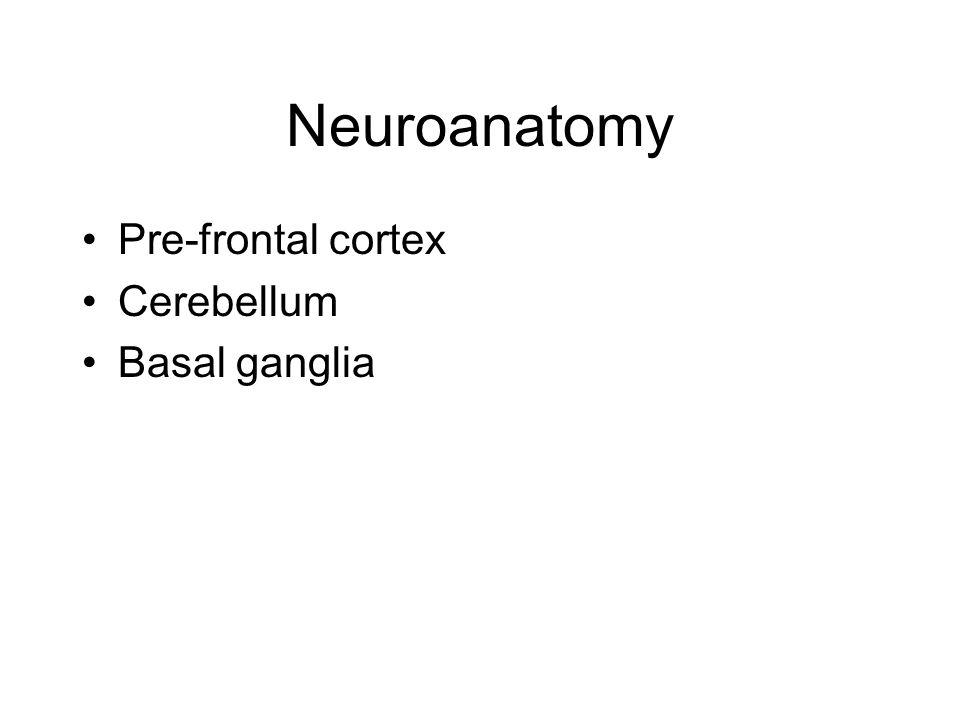 Neuroanatomy Pre-frontal cortex Cerebellum Basal ganglia