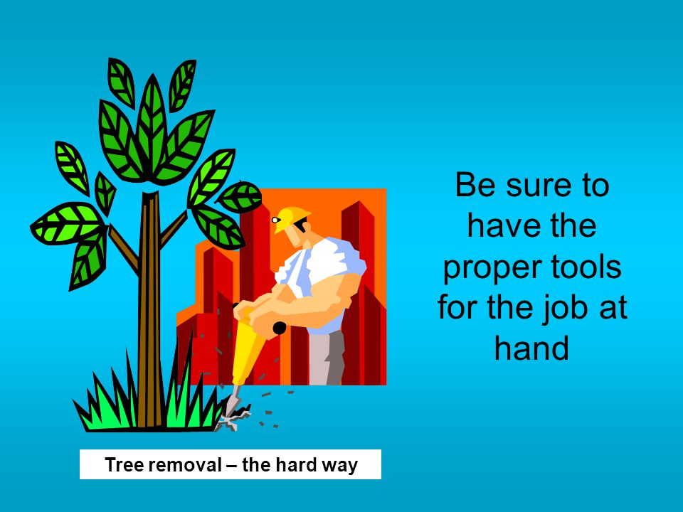 Be sure to have the proper tools for the job at hand Tree removal – the hard way