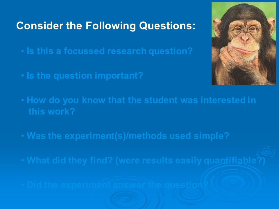 Consider the Following Questions: Is this a focussed research question.
