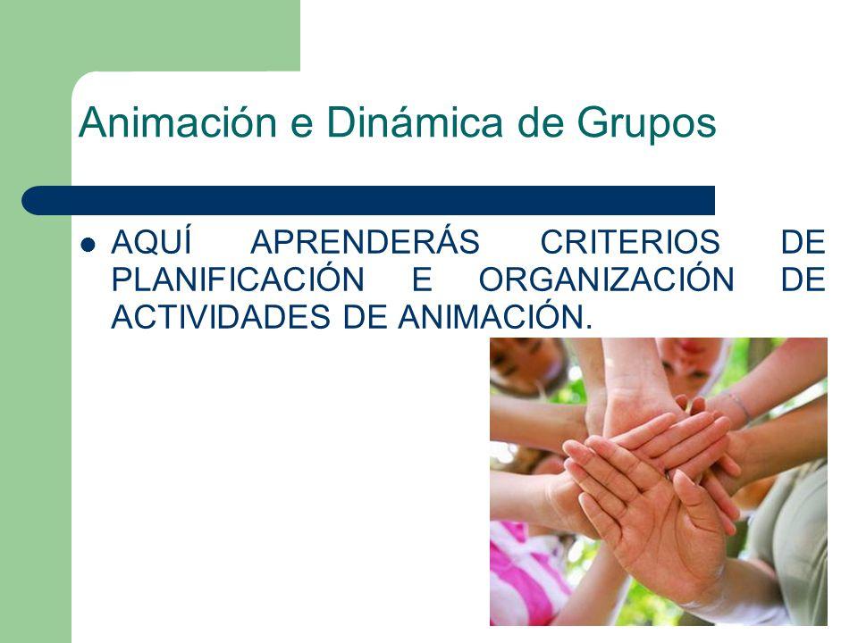 Animación e Dinámica de Grupos AQUÍ APRENDERÁS CRITERIOS DE PLANIFICACIÓN E ORGANIZACIÓN DE ACTIVIDADES DE ANIMACIÓN.
