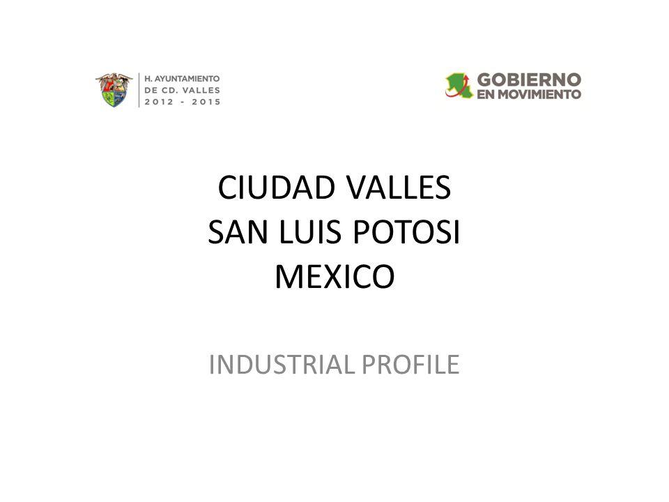 CIUDAD VALLES SAN LUIS POTOSI MEXICO INDUSTRIAL PROFILE
