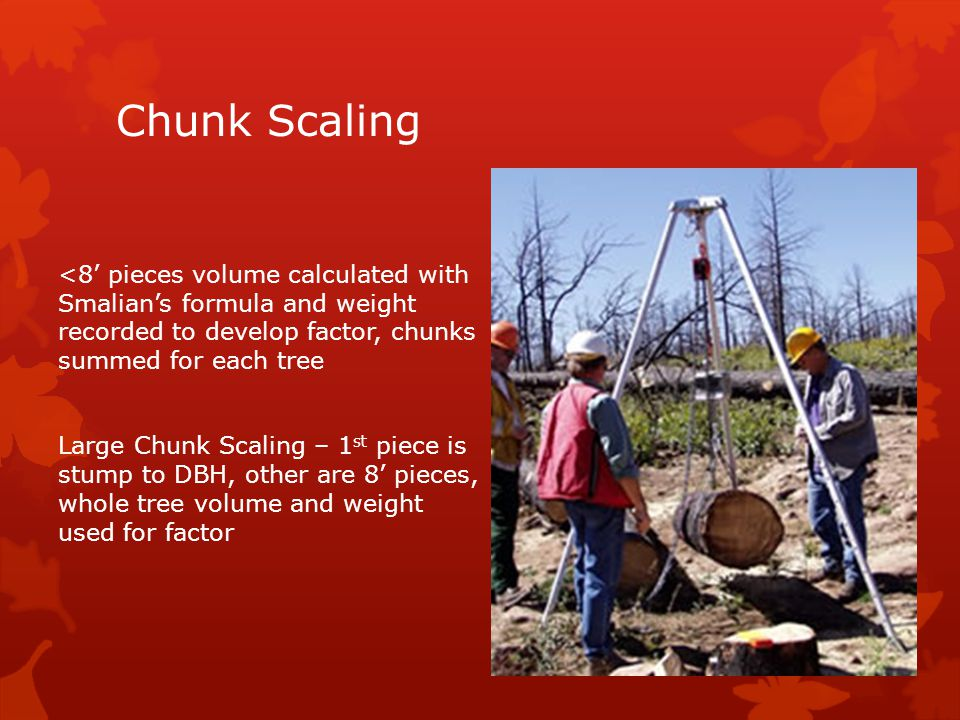 Chunk Scaling <8' pieces volume calculated with Smalian's formula and weight recorded to develop factor, chunks summed for each tree Large Chunk Scaling – 1 st piece is stump to DBH, other are 8' pieces, whole tree volume and weight used for factor