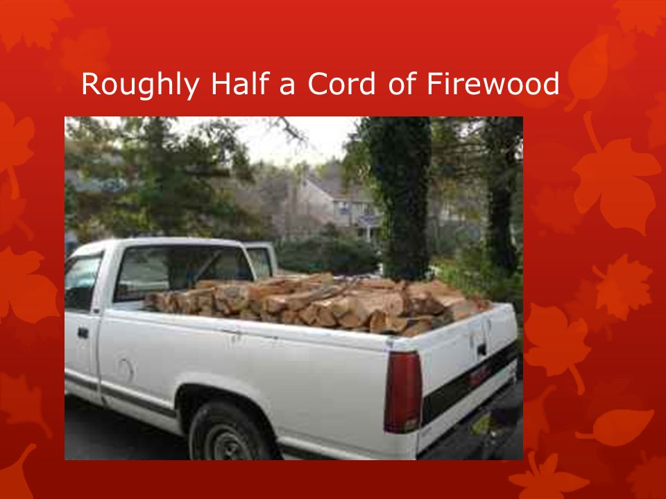Roughly Half a Cord of Firewood