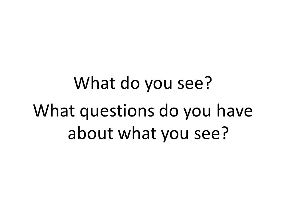 What do you see What questions do you have about what you see