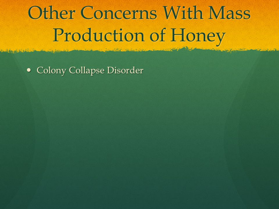 Other Concerns With Mass Production of Honey Colony Collapse Disorder Colony Collapse Disorder