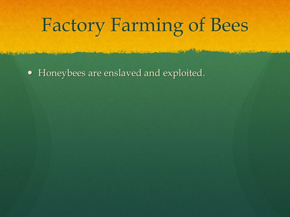 Factory Farming of Bees Honeybees are enslaved and exploited. Honeybees are enslaved and exploited.