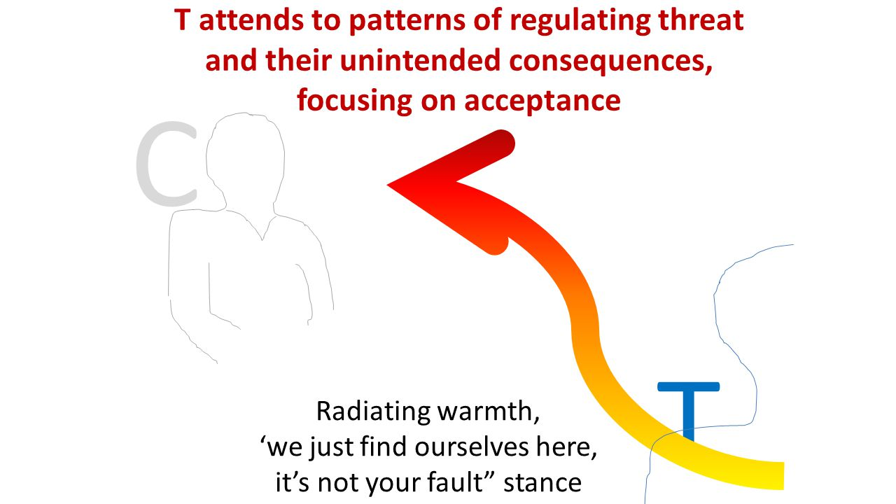 C T T attends to patterns of regulating threat and their unintended consequences, focusing on acceptance Radiating warmth, 'we just find ourselves here, it's not your fault stance