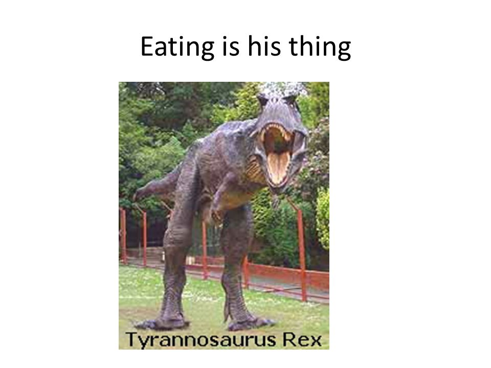 Eating is his thing