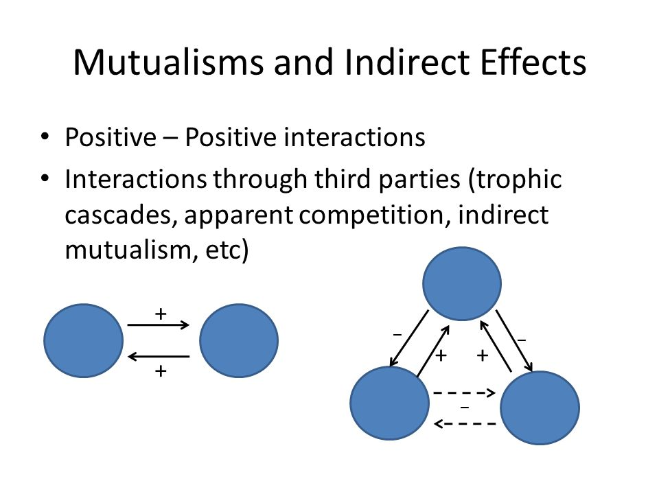 Mutualisms and Indirect Effects Positive – Positive interactions Interactions through third parties (trophic cascades, apparent competition, indirect