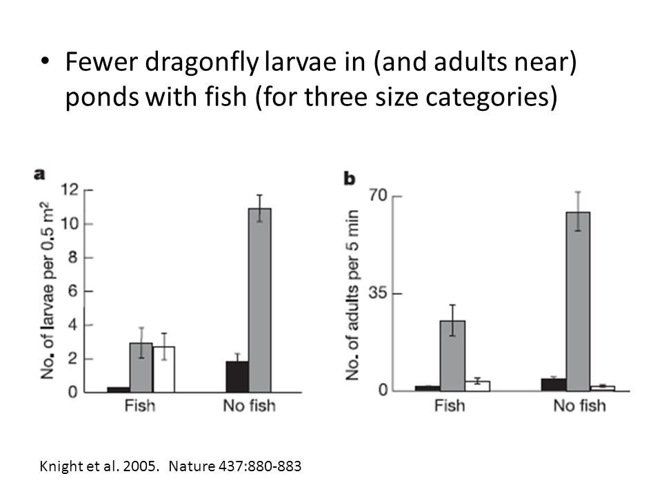 Fewer dragonfly larvae in (and adults near) ponds with fish (for three size categories) Knight et al. 2005. Nature 437:880-883