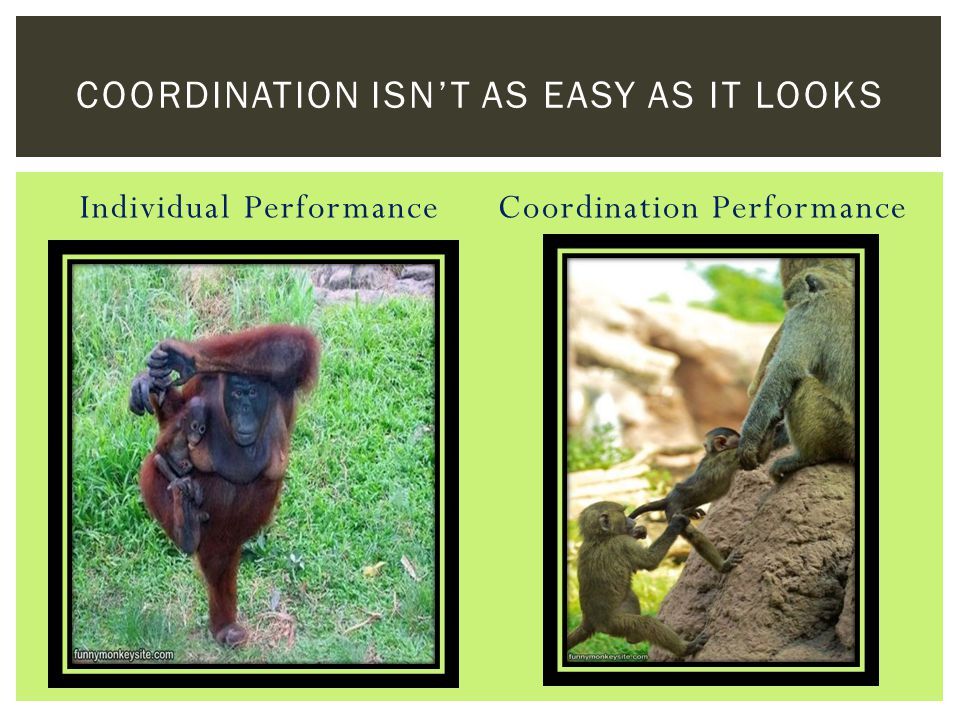 Individual PerformanceCoordination Performance COORDINATION ISN'T AS EASY AS IT LOOKS