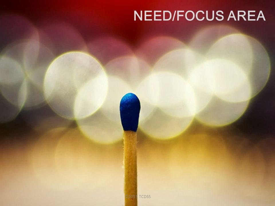 NEED/FOCUS AREA ©2013 TCDSS
