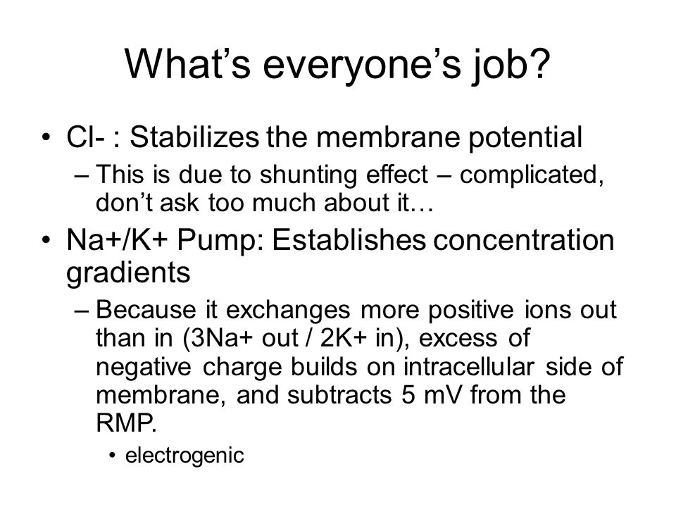 What's everyone's job? Cl- : Stabilizes the membrane potential –This is due to shunting effect – complicated, don't ask too much about it… Na+/K+ Pump