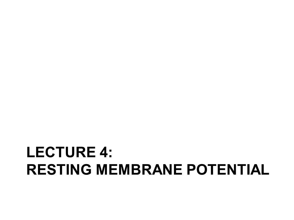 LECTURE 4: RESTING MEMBRANE POTENTIAL