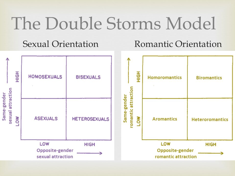 The Double Storms Model Sexual OrientationRomantic Orientation