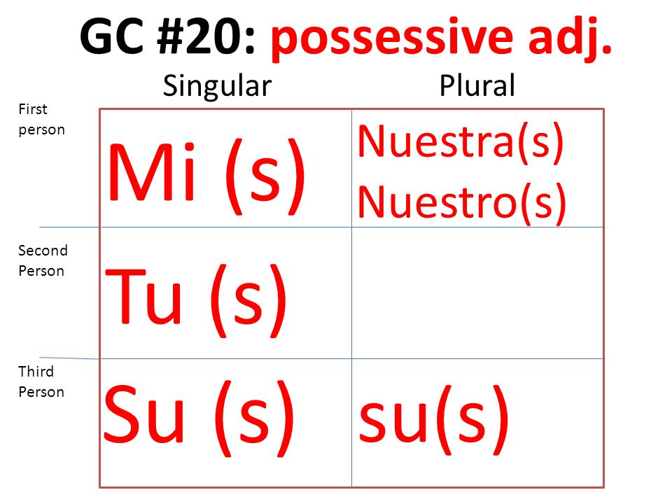 GC #20: possessive adj.
