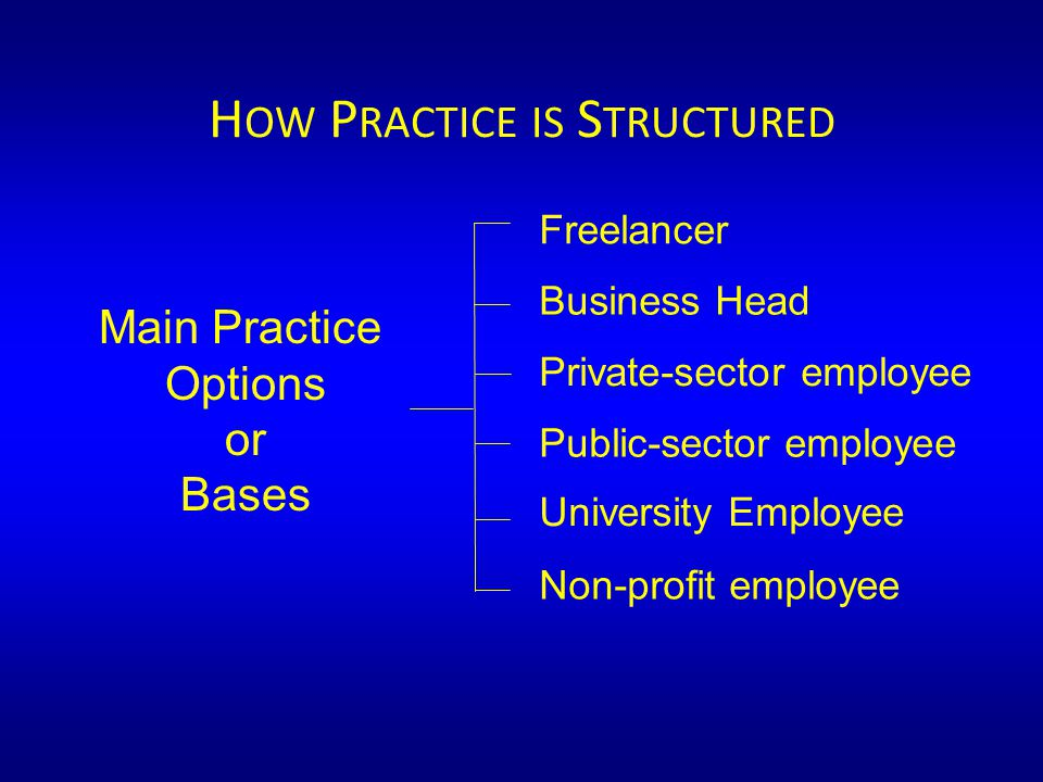 H OW P RACTICE IS S TRUCTURED Main Practice Options or Bases Freelancer Business Head Private-sector employee Public-sector employee Non-profit employee University Employee