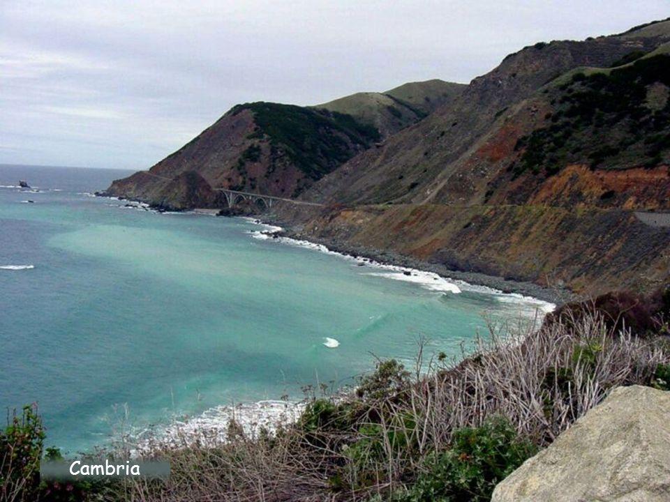 Pobřeží Big Sur Coast