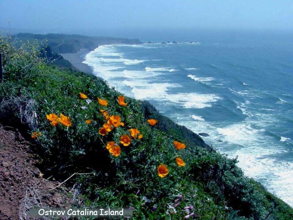 Ostrov Catalina Island